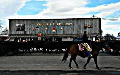 Join Us For Our Virtual Tour of Willie's Distillery!