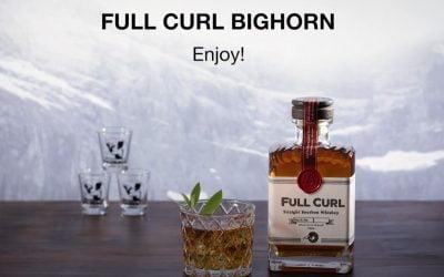 Full Curl Big Horn Cocktail